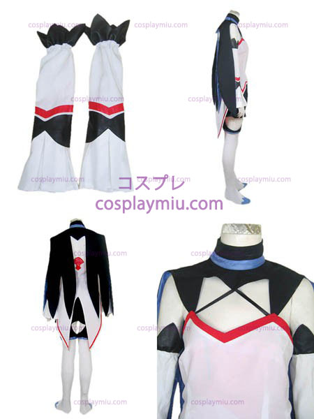 Sino brigade of twilight hack Roots Hasewo costume