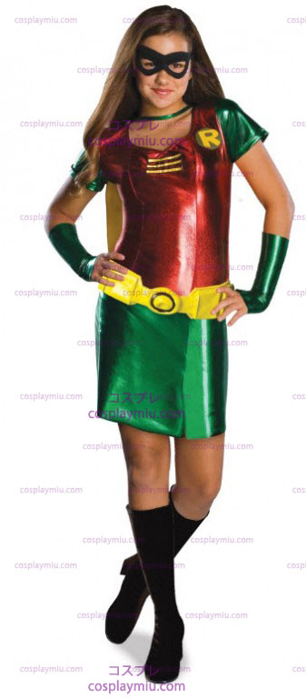 Batman Robin Costume