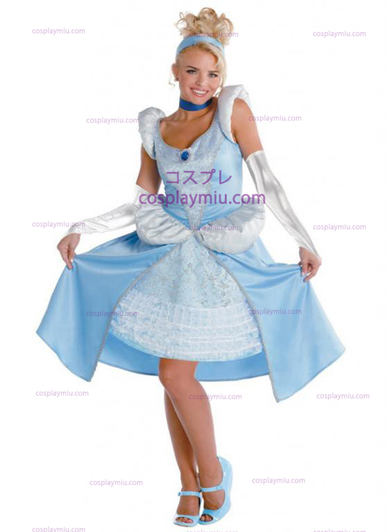 Adult Cinderella Costume