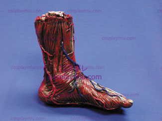 Skinned Alive Left Foot Prop Body Part