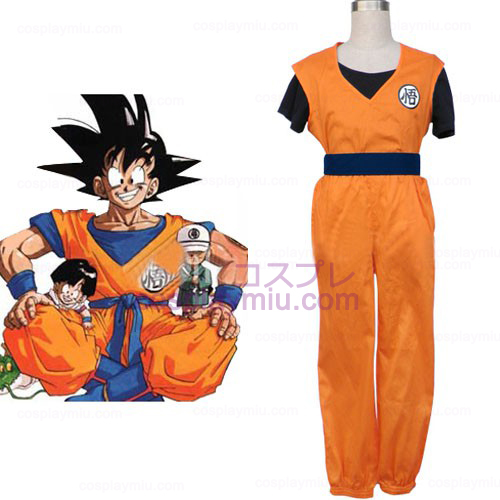 Wonderful Dragon Ball Cosplay Costume