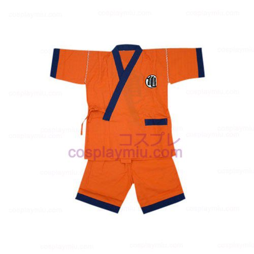 Dragon Ball Practice Suit Cosplay Costume